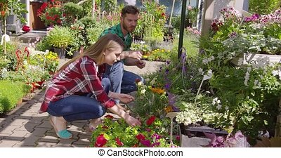 Couple gardening flowers in sunlight