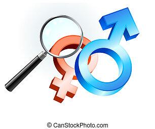 Couple Gender Symbols under Magnifying Glass