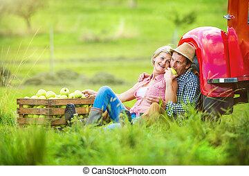 Couple harvesting apples - Senior couple sitting next to the...