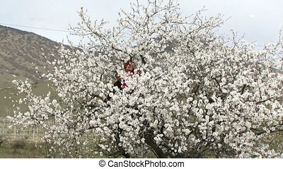 Couple having fun sitting in a tree