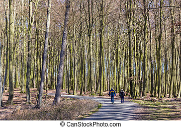 Couple hiking in the forest of Jasmund National Park on Rugen Island, Germany