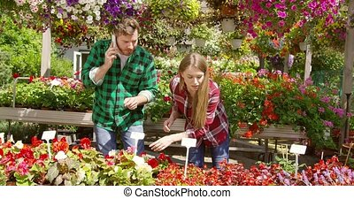 Couple holding business of floral plantation - Young woman...