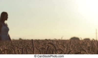 Couple holding hands in wheat field at sunset