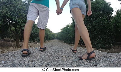 Couple holding hands of each other and walking in the tropical park. Young Man and woman going along exotic parkland lane and viewing at tree. Summer vacation trip concept. Rear back view