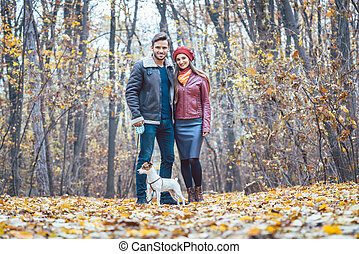 Couple in fall having walk with dog in a park