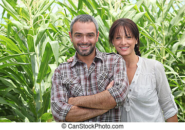Couple in front of corn plants