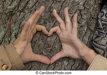 couple in love behind a tree - a young, laughed liebtes...