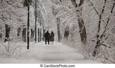 Couple In Love Walking In Winter Park