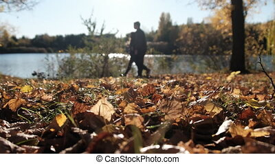 Couple in Love Walks in Picturesque Autumn Park near River ...