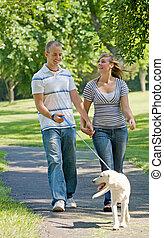 couple, jeune, chien marche