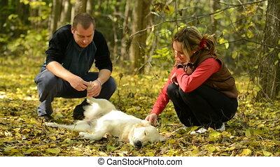couple, jeune, chien