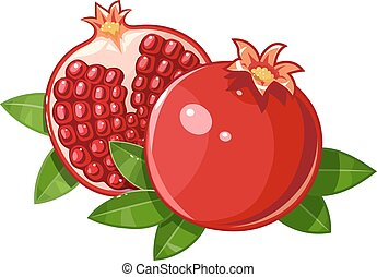 Couple juicy ripe pomegranate fruit stylized leaf vector illustration. Isolated white background. Transparent objects used for lights and shadows drawing