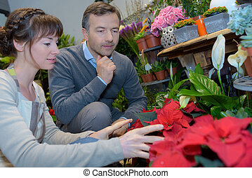 Couple looking at poinsettia