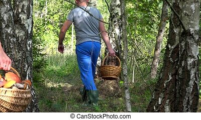 Couple man and woman picking mushrooms with baskets in forest.