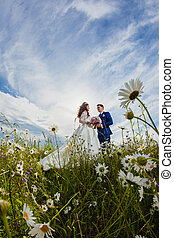 Couple newlyweds in a camomile field