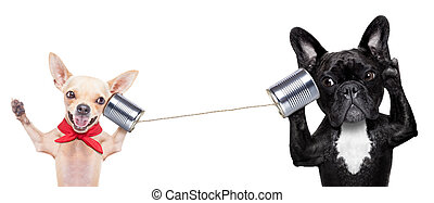 couple of dogs on the phone - couple of dogs talking on the ...