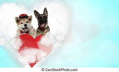 couple of dogs wearing hat with bowtie and panting happy