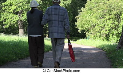 Couple of elderly people in park