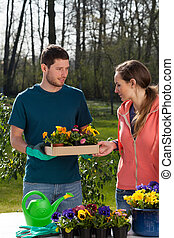 Couple of horticulturist with young pansy seedlings