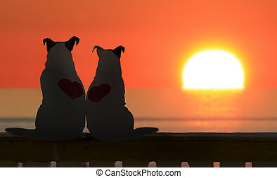 Couple of Jack russell watch the sunset with big sun