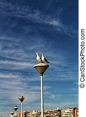 Couple of seagulls perched on a lamppost in the harbor