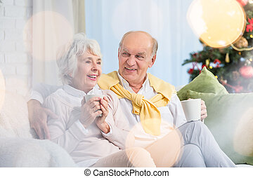 Couple of seniors during christmas
