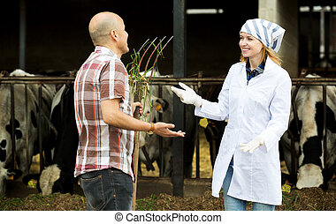 Couple of vets working with milky cows - Smiling couple of ...
