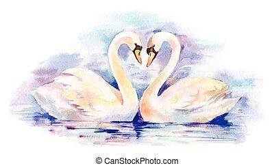 couple of white swans, hand-drawn illustration