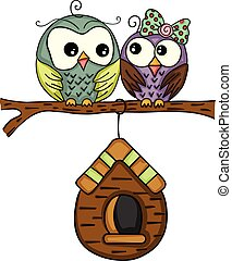 Couple owls with wooden cage