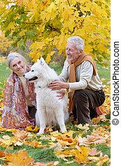 couple, parc, automne, portrait, personne agee, heureux