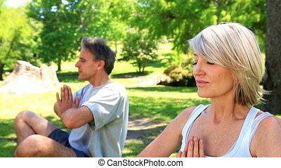 couple, parc, ensemble, yoga
