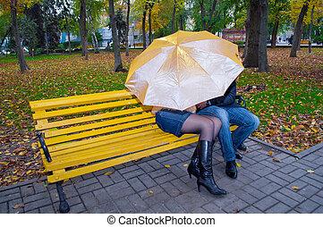 couple, parc, jaune, banc, automne, portrait, heureux