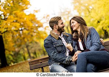 couple, parc, jeune, banc, automne, aimer