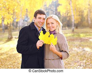 couple, parc, jeune, jaune, automne, pousse feuilles, portrait, sourire, érable, heureux