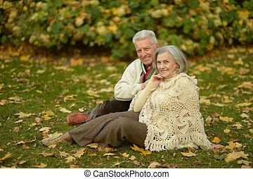 couple, parc, personnes agées