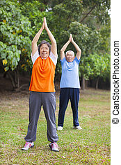 couple, park., personne agee, exercice