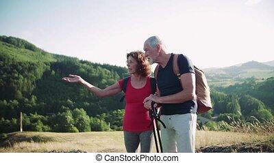 couple, personne agee, sacs dos, nature, touriste, randonnée, voyageurs, parler.