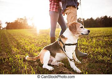couple, promenade chien, automne, personne agee, nature.