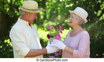 couple, quoique, baisers, mignon, jardinage, retiré