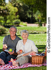 couple retiré, pique-niquer, dans jardin