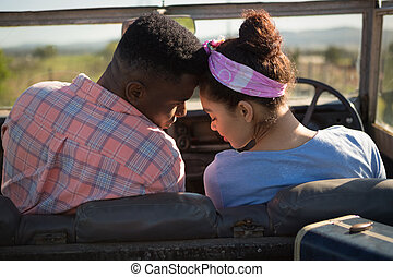 Couple romancing in a car