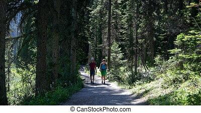 couple, sac à dos, vue frontale, forêt, dense, caucasien, 4k...
