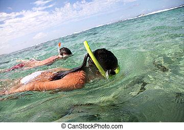 couple, snorkeling, dans, antilles, eaux
