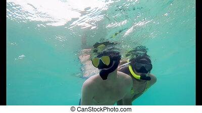 Couple snorkeling underwater in turquoise sea 4k - Romantic ...
