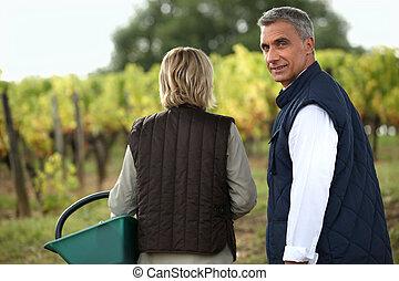 Couple tasting wine in the vineyard