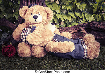 couple teddy bears with rose in the garden
