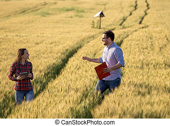 Couple walking in barley field - Happy couple enjoying ...