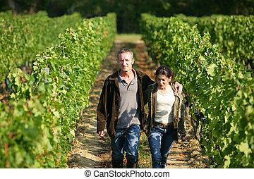 couple walking in their vineyard