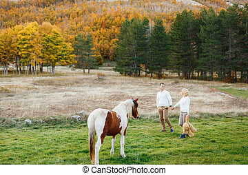 Couple walks on the lawn in the autumn forest holding hands. Horse is grazing on the lawn. Woman holding a teddy bear in her arms