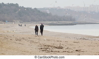 Couple with dog walking along the beach - Adult couple with...